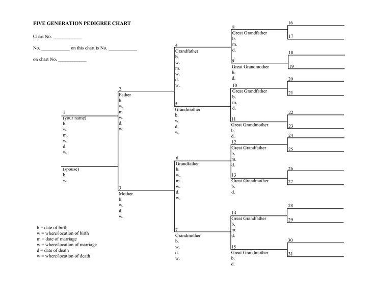 25+ unique Blank family tree ideas on Pinterest Blank family - family tree chart template