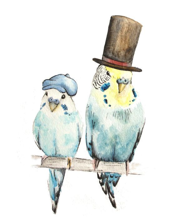 The Professor and his Apprentice - Watercolor and Pen and Ink Art Print Prof. Layton and Luke Parakeet Blue Yellow Budgie Top Hat Stove Pipe...