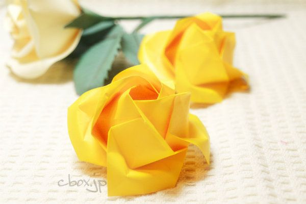 はて、父の日、父の日……。検索してみてようやっと父の日の花が黄色いバラであることを知りました。