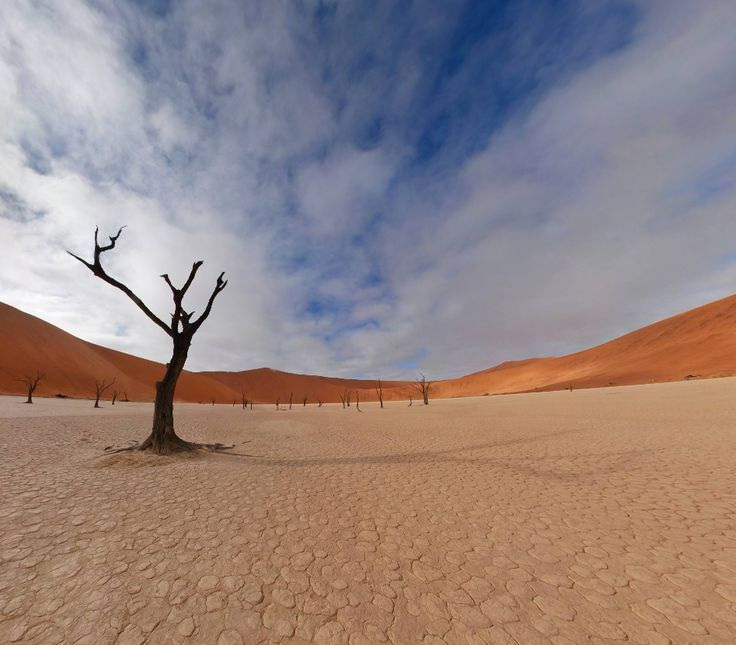 Dead Vlei (Namibia) by Martin Broomfield http://www.360cities.net/image/dead-vlei-namibia#600.31,-15.30,178.0