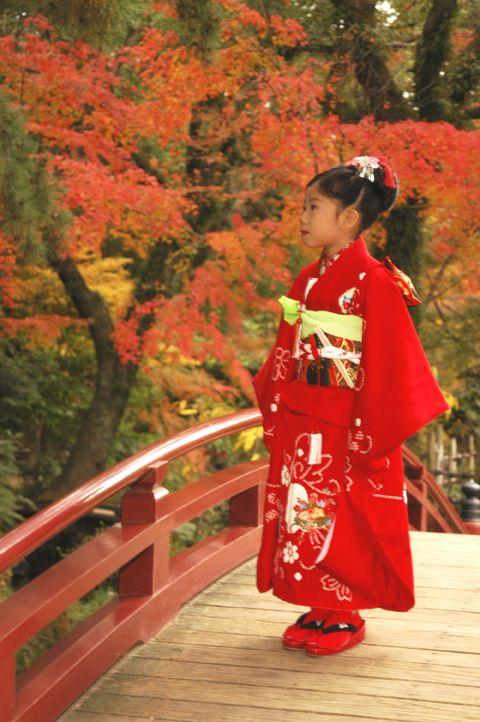 Shichigosan in Autumn celebrate for children