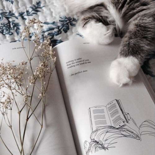 lovbun: nothing is safer than the sound of you reading out...
