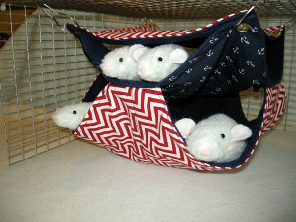 #Hammock for the little rodents #pets. Take a look at 10 pet hammock ideas at: http://impressivemagazine.com/2013/07/23/10-pet-hammock-ideas/#more-12217