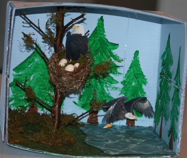 72 Best Images About Eagle Crafts Activities For Kids On