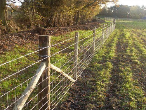 Image Result For Sheep Wire Fence Sheep Fence Stock