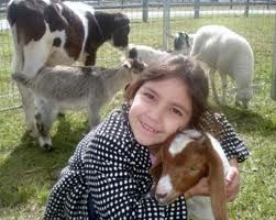 Adorable little girl hugs a goat! Rent barnyard animals for petting zoo fun, birthday parties and fundraising events in California. Rent now in Orange County, Santa Ana, Irving, Laguna Beach and more!