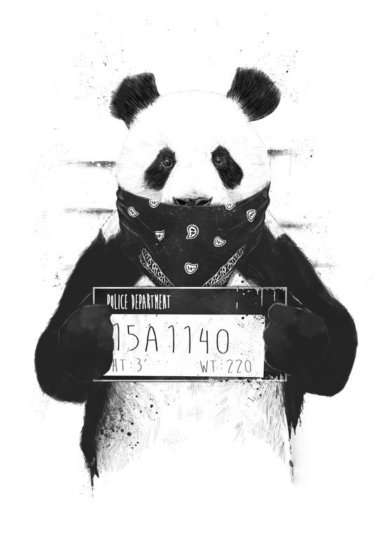 Poster | BAD PANDA von Balazs Solti | #poster #design #illustration #balazssolti #bsolti #art #artwork #drawing #panda
