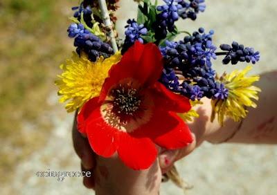 Alexandra's handful of spring flowers.