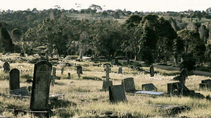 Waikumete cemetery is the largest in Auckland and is incredibly beautiful (as well as great for walking the dog). Landscape. Glen Eden, Auckland, New Zealand.
