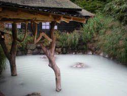 Japanese Guest Houses | List of Ryokans in Kakunodate | Reviews, Ratings & More