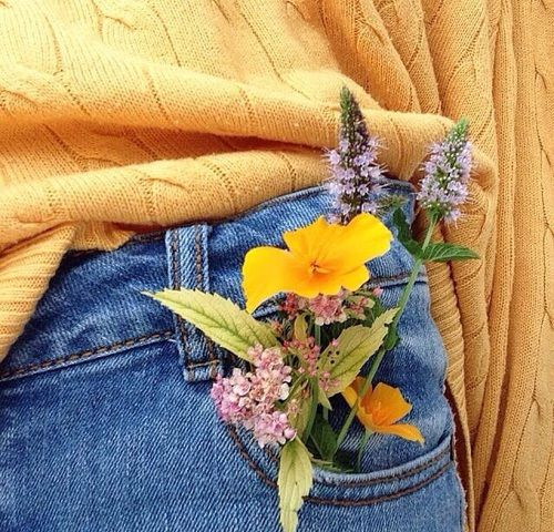 Imagen de yellow, flowers, and indie