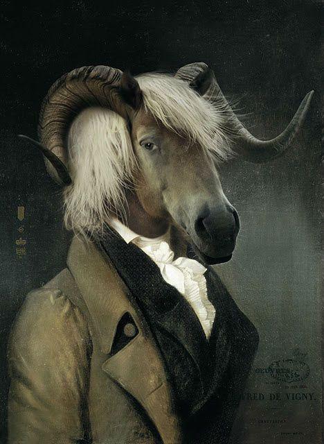 25 best ideas about animal heads on pinterest animal