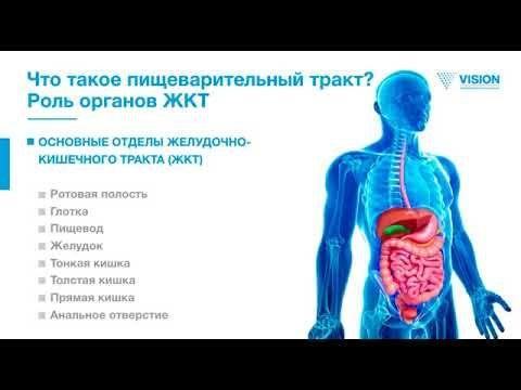 Инновационные технологии и продукции : «Здоровье, красота и долголетие через кишечник». З...