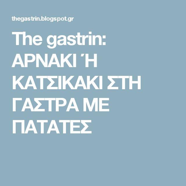 The gastrin: ΑΡΝΑΚΙ Ή ΚΑΤΣΙΚΑΚΙ ΣΤΗ ΓΑΣΤΡΑ ΜΕ ΠΑΤΑΤΕΣ