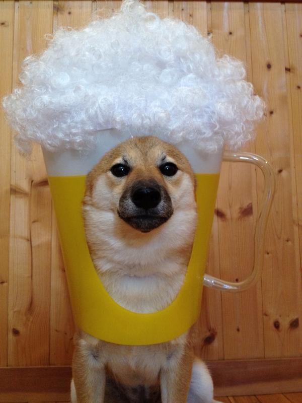 I am beer