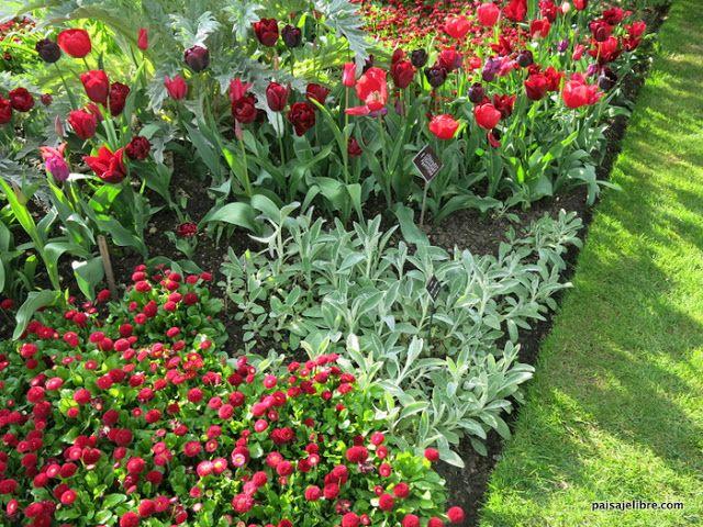 Como Combinar Colores En El Jardin Teoria Del Color Paisaje Libre Jardines Plantas Jardin Ideas De Jardineria