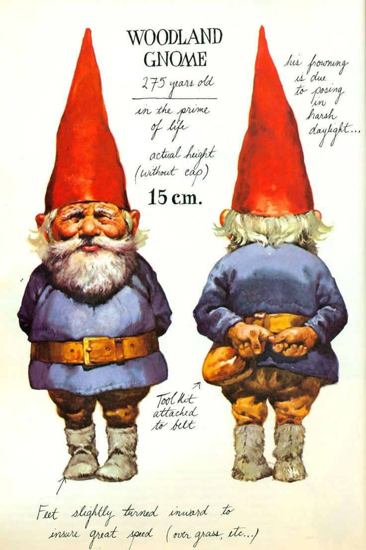 """Gnomes : I love this book ... I'm NOT """"IN"""" Love with this book, I just appreciate it :D"""