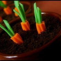 Carrot Patch Pudding CupsPuddings Cups, Easter Recipe, Food, Dirt Cups, Chocolates Puddings, Patches Puddings, Dirt Desserts, Rainbows Twizzlers, Carrots Patches