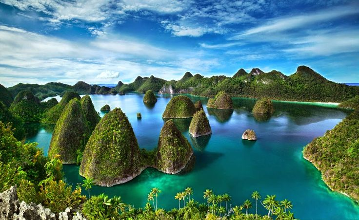 Raja Ampat, Wisata Bawah Laut Terbaik Dunia | Wisata Indonesia - Seputar Informasi tempat wisata di Indonesia hanya di travellerindonesia.blogspot.com