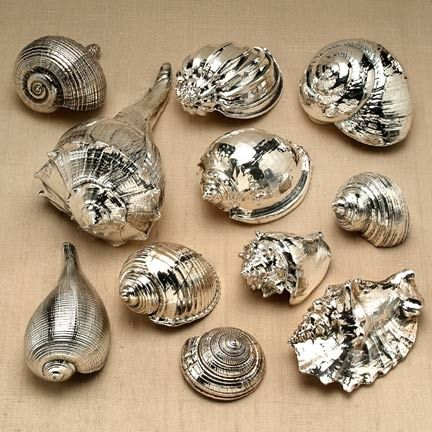 Spray painted sea shells. What an inexpensive way to get that expensive look!