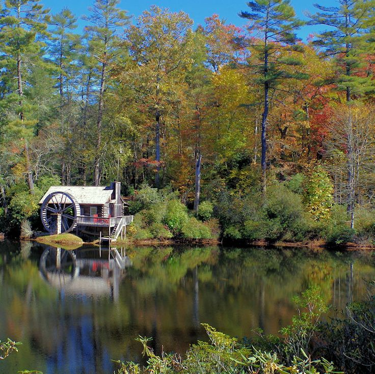 34 best images about asheville fall color 2015 on for Asheville nc lodging cabins