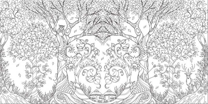 Johanna Basford Enchanted Forest Courtesy The Artist And Laurence King 3