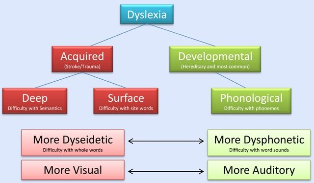 Your guide to the many different types of dyslexia including surface and deep. Understanding your type can help you find better ways to learn.
