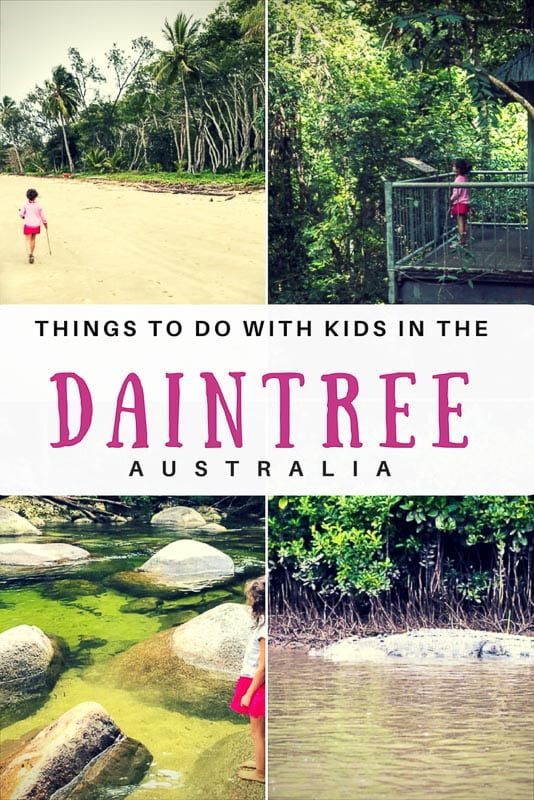 Daintree Tours - Things to do in the Daintree - Thrifty Family Travels