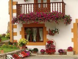 Bahçe ve Balkon Çiçekleri