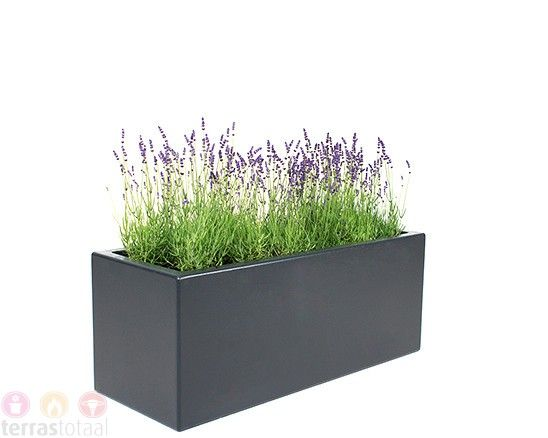 1000 idee n over bloempotten op pinterest bloempotten voor buiten buiten planters en - Ad decoratie binnen ...