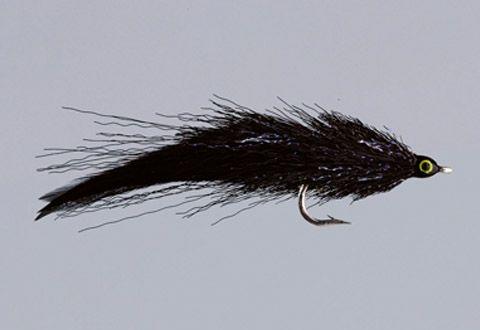 Mihulka's Black Surface Eel