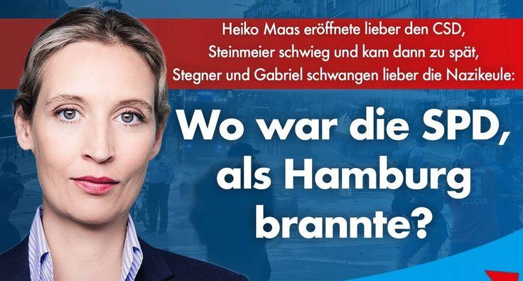 (Jürgen Fritz) Die Bilder rund um den G20-Gipfel in Hamburg haben nicht wenige Menschen tief erschüttert, zeigen sie doch, was in unserem Land schon länger schief läuft. Hier erste Indizien, wie si…