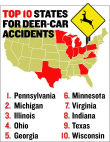 Pennsylvania is number one for deer collisions... the MOST collisions 'cause  the are too many deer and many drivers too!