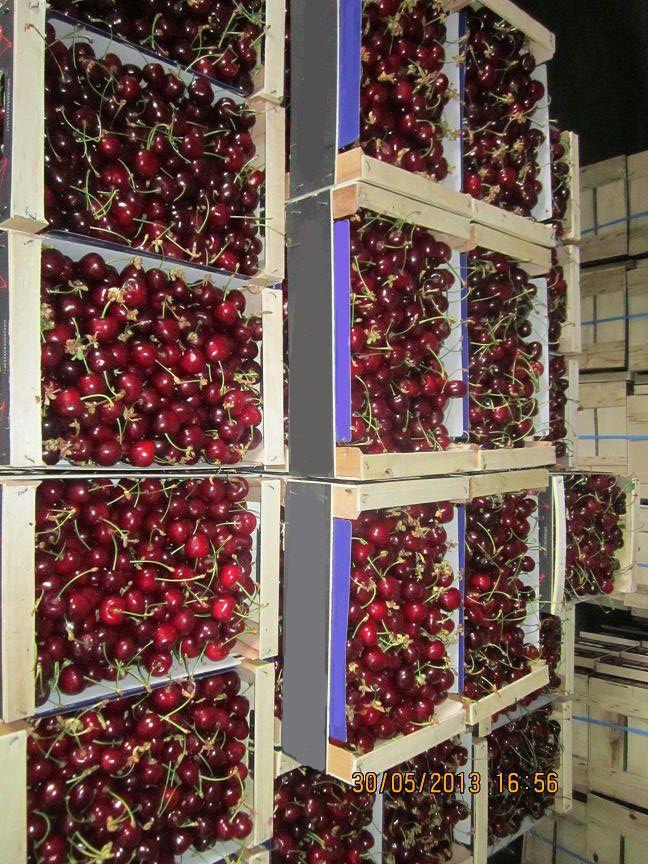 Εδώ και 200 τουλάχιστον χρόνια η συστηματική καλλιέργεια του κερασιού στην Έδεσσα και όλη την περιοχή της Πέλλας είναι ένα απο τα κύρια χαρακτηριστικά της.  Κεντρικά γραφεία Φιλίππου 10, Έδεσσα Τ.Κ.: 58200 Τηλ: 23810- 23237 Φαξ: 23810- 23159 email: sales@realfruit.gr website: www.realfruit.gr Παναγίτσα Έδεσσας 1ο χιλ. Παναγίτσας- Έδεσσας