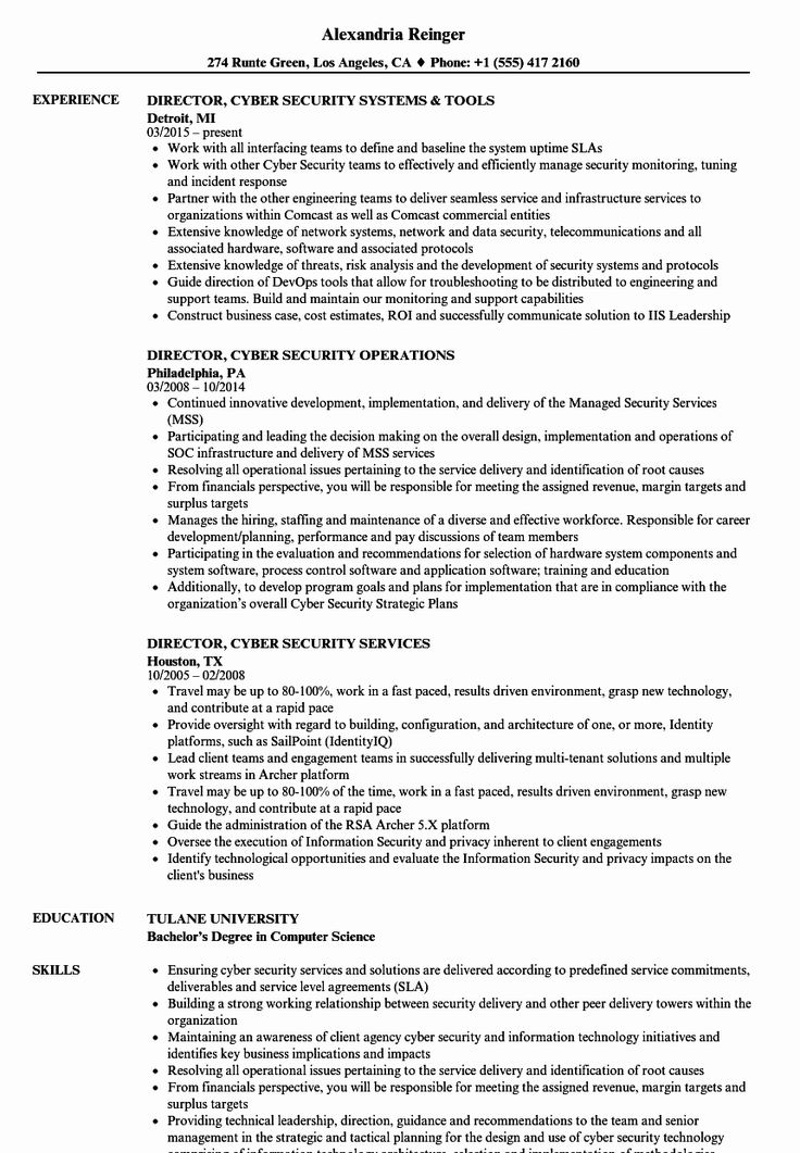 23 Cyber Security Resume Examples in 2020 Project