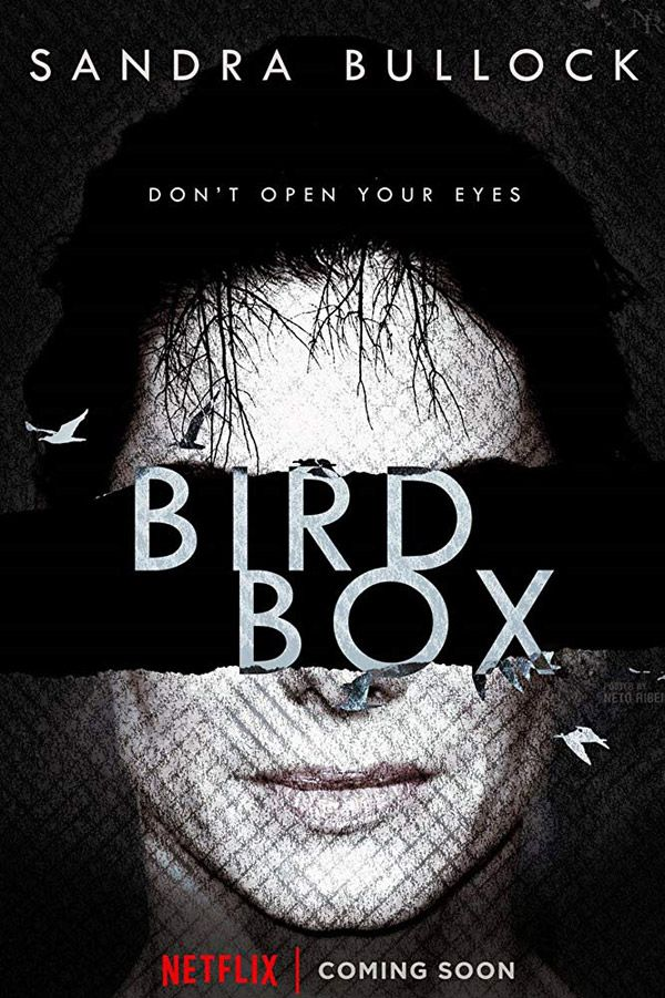 Image result for movie posters 2018 bird box