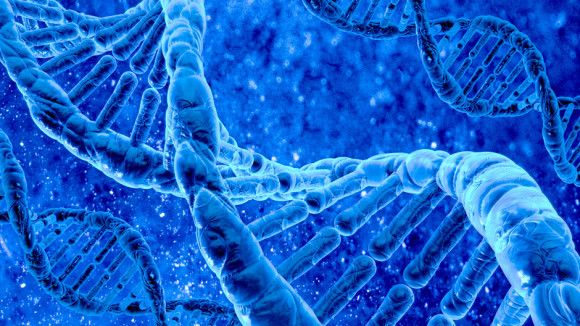 Biology Scholarships that Can Be Beneficial for a Career in Biology