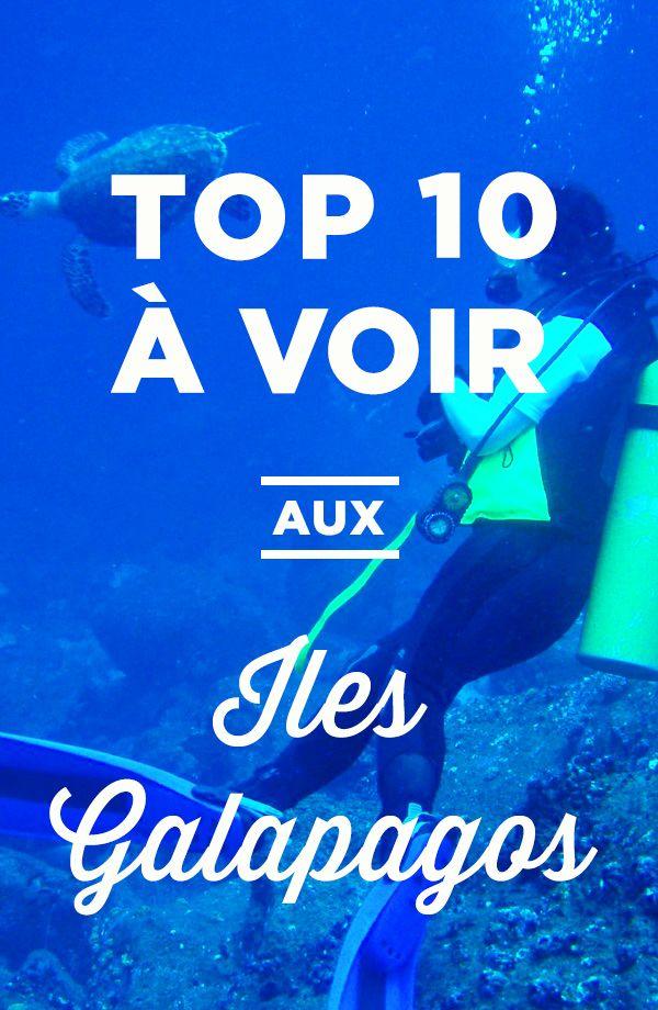 Top 10 des Galapagos: tout ce qu'il ne faut pas manquer!