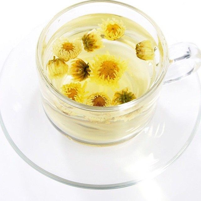 According to the Herbs 2000 website, clinical trials performed in China and Japan indicated that chrysanthemum effectively reduced blood pressure levels and relieved various high blood pressure symptoms such as dizziness, insomnia and headaches. These studies also demonstrated that the strong antibiotic properties chrysanthemums might also be effective for treating angina, or chest pain that stems from coronary heart disease. More human studies need to be completed on tea, however.