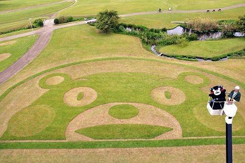 江津湖公園に登場したくまモンの地上絵