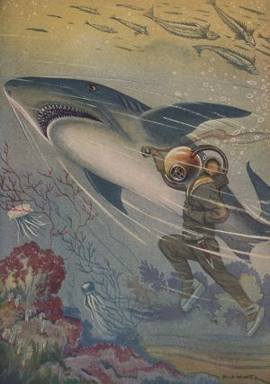 "Los traductores / Milo Winter, illustration for ""Vingt mille lieues sous les mers"" by Jules Verne."