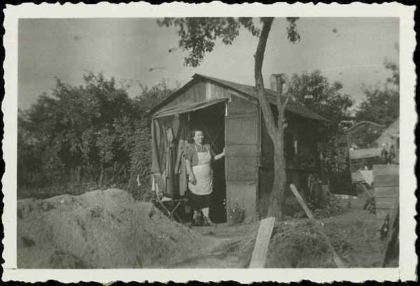 Photo d'amateur en Belgique, cabane d'un jardin ouvrier, années 1950 /©Musée du Vivant-AgroParisTech