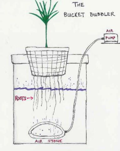 Diagram of the hydroponics bucket bubbler system.