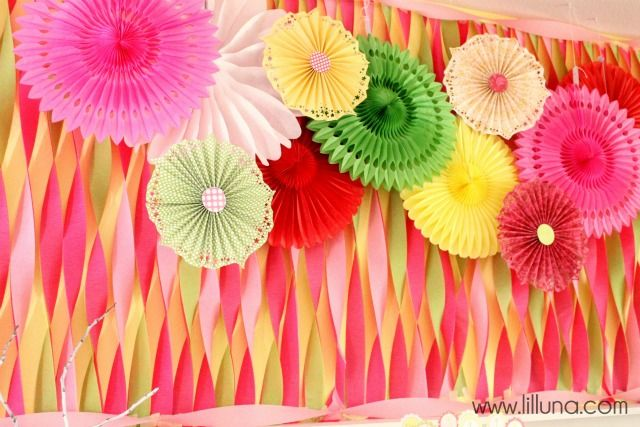 Paper Fan Backdrop Streamers Accordion Fans And Tissue