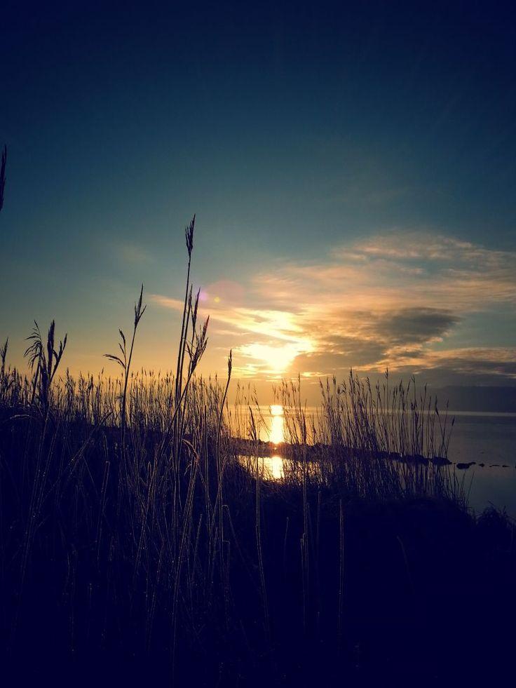 Sunrise over Vejle Fjord