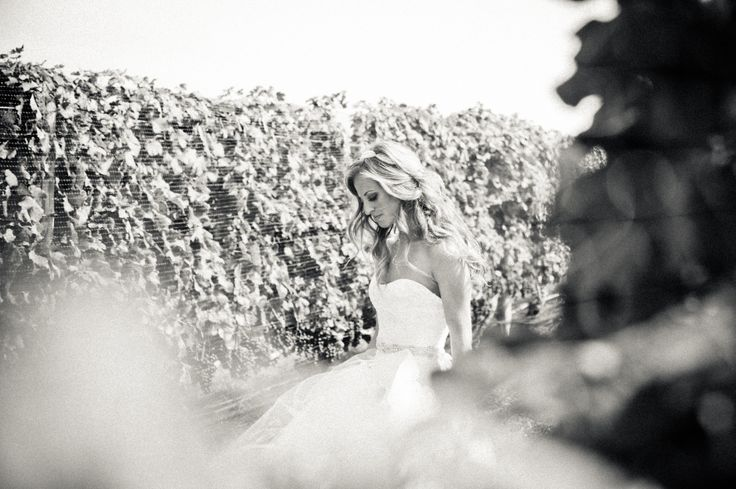 In the Vineyard before walking down the aisle