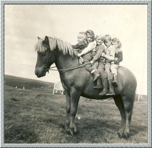 Icelandic kids on a Icelandic pony. My mom used to tell us stories about this exact thing, except the horse didn't want them up there, so he would just put his head down and they would all slide off haha