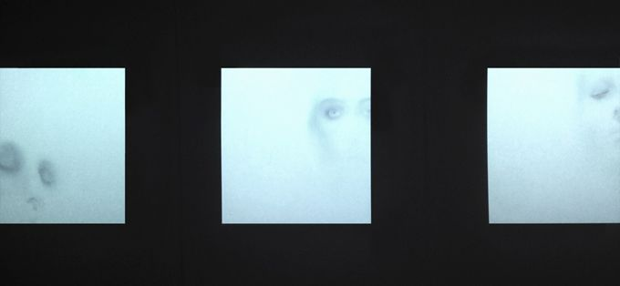 Megan Erasmus. aping blinking seeing 2015. Ethics in Biotechnology and Transgenic Art. Each portrait consists of approximately 50 layered images of the artist. Transgenic art methods are applied conceptually in a non-bioart manner. Copyright reserved.