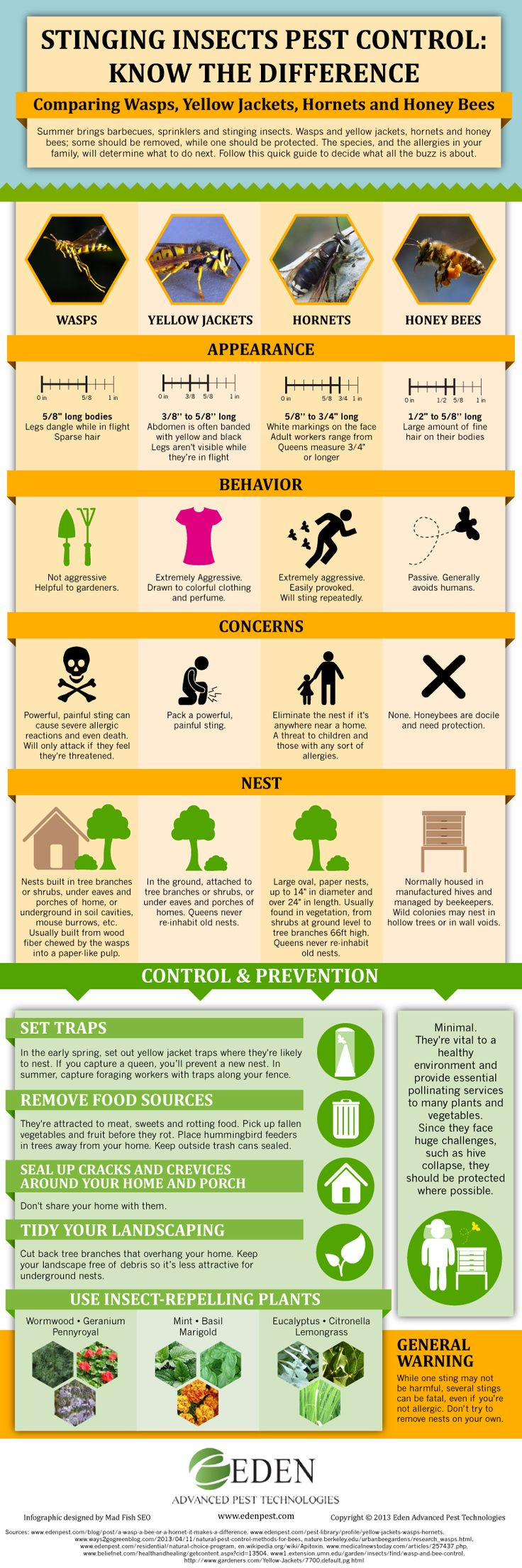 Stinging Insects Pest Control: Know the Difference - Comparing Wasps, Yellow Jackets, Hornets and Honey Bees