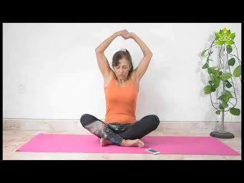 yoga para principiantes clase 9 en 2020  yoga
